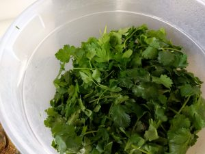 cilantro-and-parsley